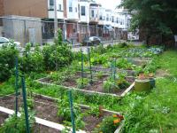 Pocket Farm in April, 2011 | via PhiladelphiaGreen, PHS