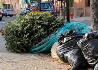 Treecycle don't trash your holiday greens.