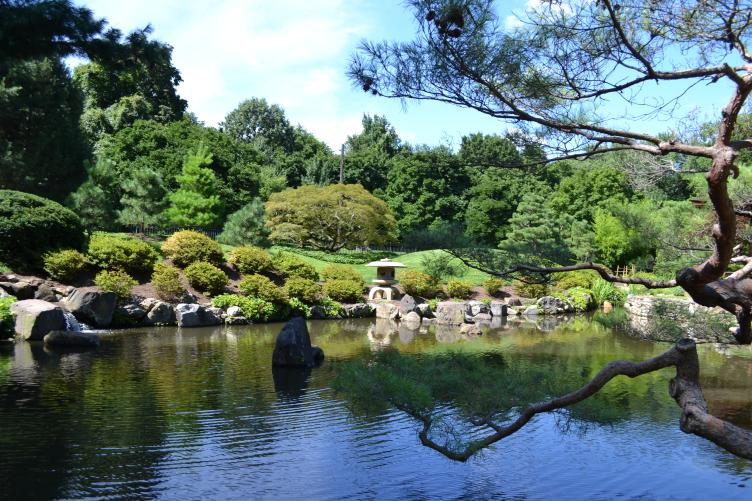 Koi pond at the Shofuso Japanese House and Garden