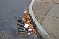 Litter covers a storm drain in PSCA's coverage area