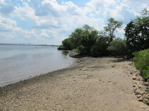 Living shoreline at Lardner's Point Park | Claire Schmidt / PlanPhilly
