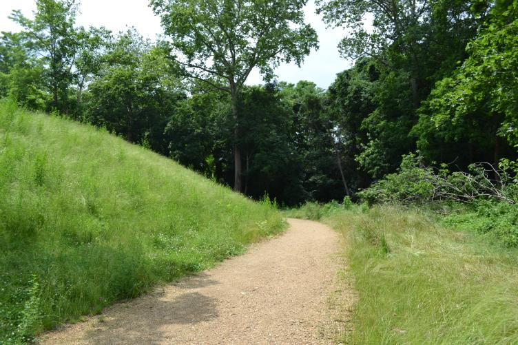 Some of the landscape features the nature path wraps around are man made, like this small mound