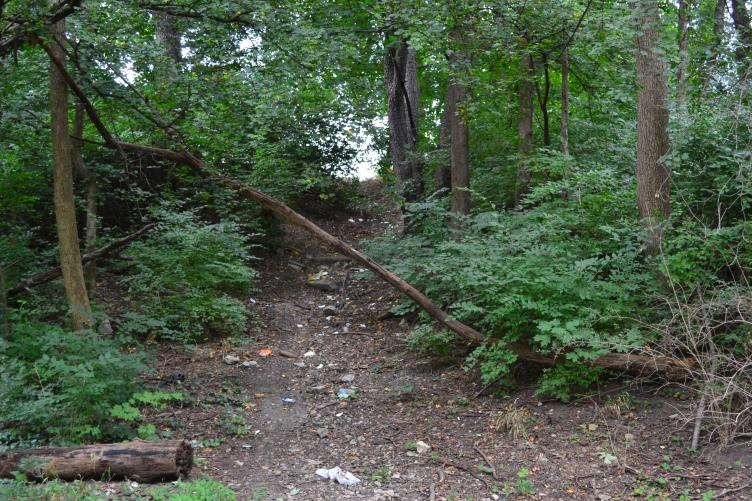 Some unofficial access points like the paved Cobbs Creek Trail with unpaved, off road trails