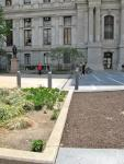 The line between Dilworth Park and City Hall's north apron.